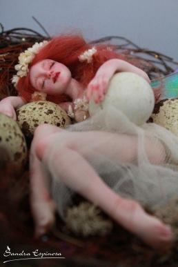 Fairy sleeping in nest_09