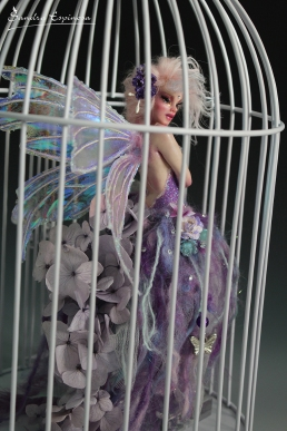 Fairy sorceress caught _04