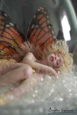 Golden Tinkerbell sleeping_05